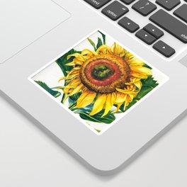 Big Sunflower Sticker