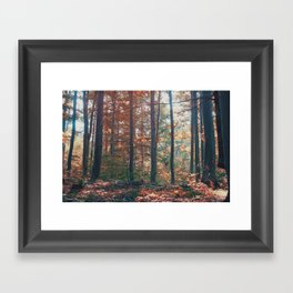 into the woods 13 Framed Art Print