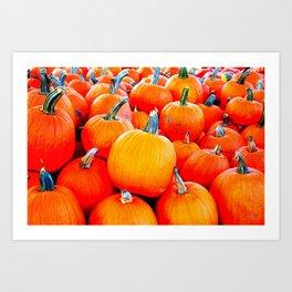 Small Pumpkins Art Print