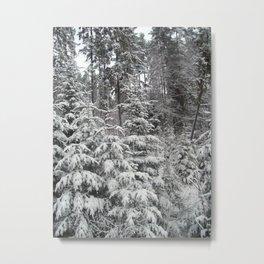 Travel to the ski resort of Zakopane in Poland Metal Print