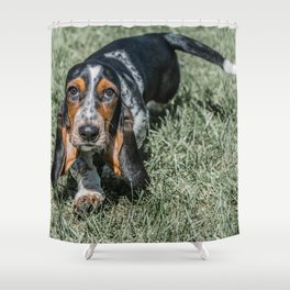 Basset Hound Puppy Droopy Ears Walking in Green Grass Cute Adorable Dog Photography Shower Curtain