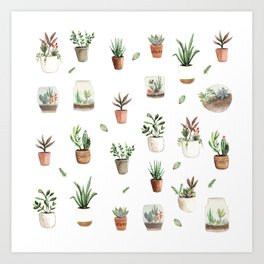 Succulent and Cacti pots and terraniums Art Print