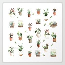 Succulent and Cacti pots and terraniums Art Print