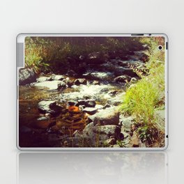Healing Waters Laptop & iPad Skin