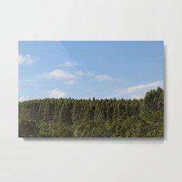 Hamakua Ranch. Metal Print