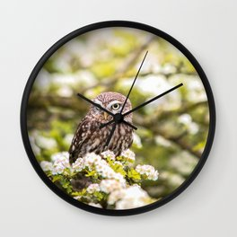 Wise Owl Wall Clock