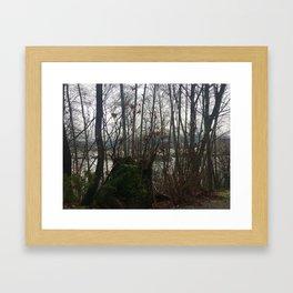 North Shore Through the February Trees Framed Art Print