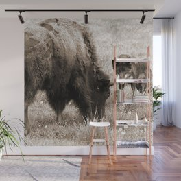 Aggressive wolf hunting bison Wall Mural