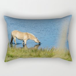 Horse Drinking Denmark Nymindegab Rectangular Pillow
