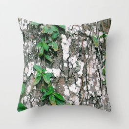 Tree cortex and climbing plant in Colombia Throw Pillow