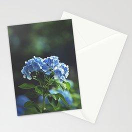 Prodigal Stationery Cards
