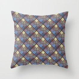 See Through Throw Pillow