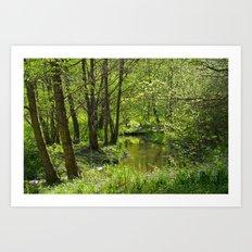 Idyllic scenery Art Print