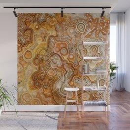 Crazy Lace Laguna Agate Wall Mural