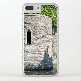 Birds Eye View Clear iPhone Case