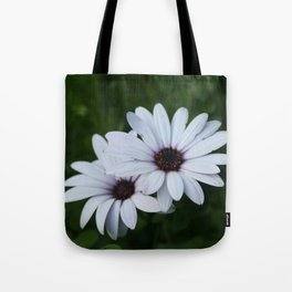 Friendship - Two African Daisies Tote Bag