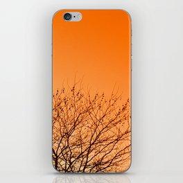 Tangerine sky iPhone Skin