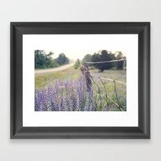 Lavender road Framed Art Print