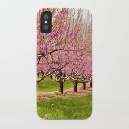 Pink Flowering Trees iPhone Case