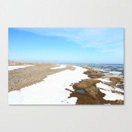 Spring Melt Canvas Print