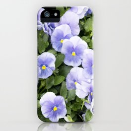 Longwood Gardens Orchid Extravaganza 56 iPhone Case