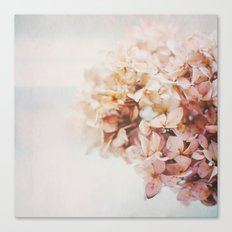 Pastel Stories Canvas Print