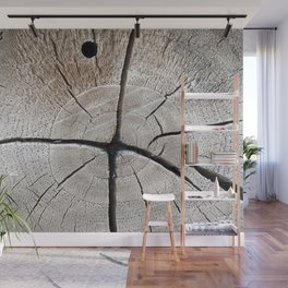 dry wood branch Wall Mural