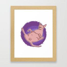 The Swag Pixel Art Penis Cat Has Nothing To Hide Framed Art Print
