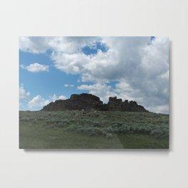 Big Horn Prairie  Metal Print