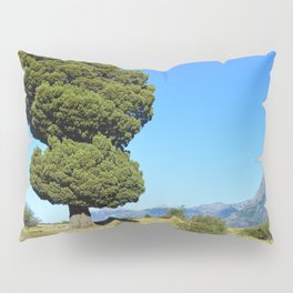 Big tree and patagonian landscape Pillow Sham