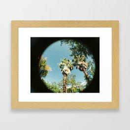 Palm Trees and Summer Breeze Framed Art Print