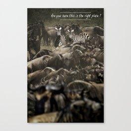 Are you sure this is the right place? Canvas Print