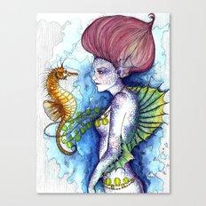 the seahorse's friend Canvas Print