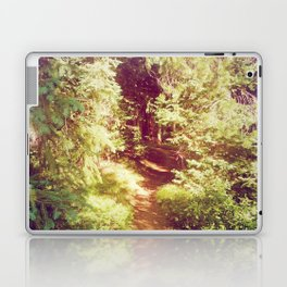 Come to the Secret Place Laptop & iPad Skin