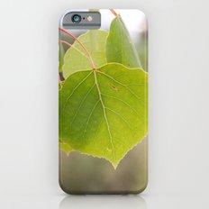 Aspen Green Slim Case iPhone 6s
