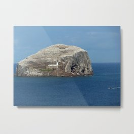 Gannets on Bass Rock, North Berwick, Scotland Metal Print
