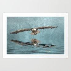 Bald Eagle on Misty Lake Art Print