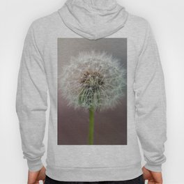 Moment of tranquility Hoody