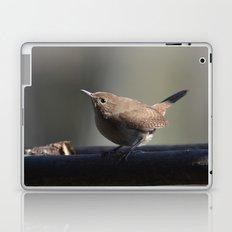 House Wren Laptop & iPad Skin