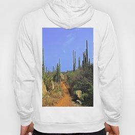 Desert Pathway Hoody