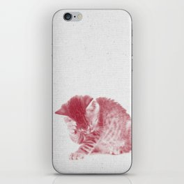 Kitten 01 iPhone Skin