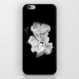 geranium in bw iPhone Skin