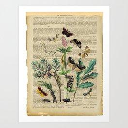 Book Art Caterpillar, Moths & Butterflies Art Print
