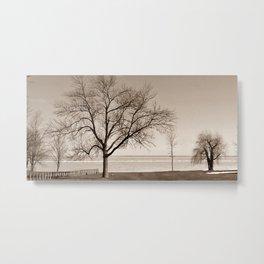 Lakeside Winter - Sepia Metal Print