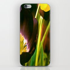TULIP TIME iPhone & iPod Skin