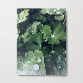 Rainy weather Metal Print