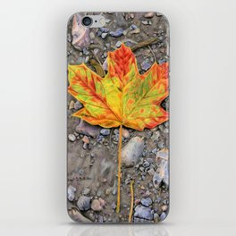 A Walk Through The Woods iPhone Skin