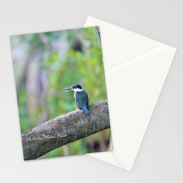 Collared Kingfisher Stationery Cards