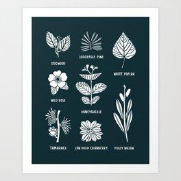 Shrubs & Trees // Navy & White Art Print