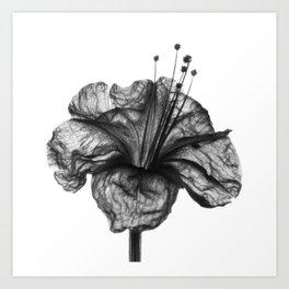 Buenas Noches Art Print